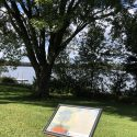 An outdoor snap poster frame with information about the landscape in front of a body of water with trees in the horizon